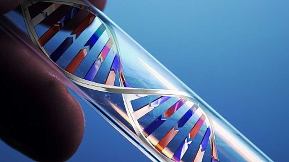 Look At Important Information of MTHFR Gene Testing