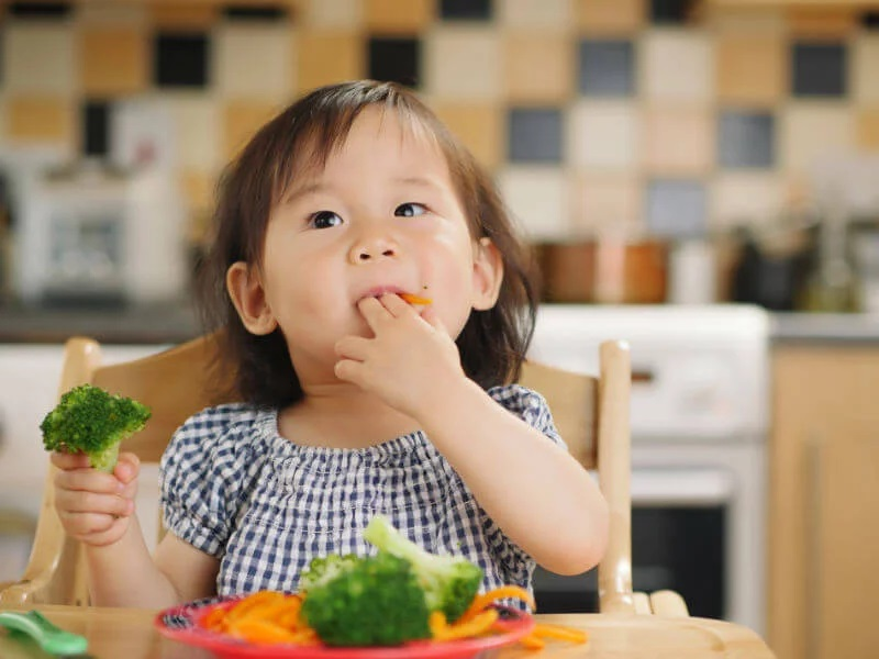 Introducing New Foods to Picky Toddlers